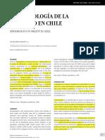 Epidemiologia Obesidad Chile