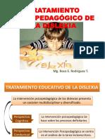 Tratamiento Psicopedagogico de Las Dislexias