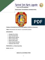 cultura andina 2015 II.docx