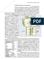 Secrecion Biliar y Pancreática