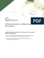 O desenvolvimento da democracia  participativa