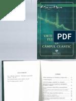 9. Vieti Paralele- Fluctuatii in Campul Cuantic
