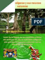 Pueblos Indígenas y Sus Recursos Naturales