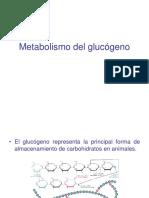 presentacion-glucogenolisis-kine-2010.ppt