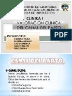 Canal Blando Del Parto