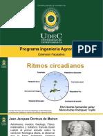 Expo Ritmos Cicardianos