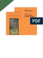 Informe de Práctica Taller Guanabana