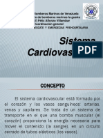1537014758105 Sistema Cardiovascular