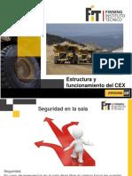 Estructura y Funcionamiento Del CEX