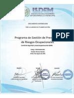 Programa de Gestión de Prevención de Riesgo