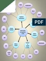 Mapa Radial U.IV.pptx