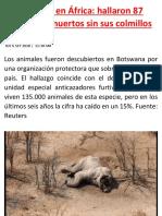Masacre en África.docx