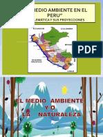 Situacion Del Medio Ambiente Del Peru - 1 Ppt.