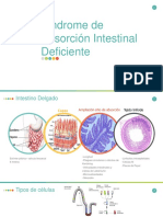 Sindrome de Absorción Intestinal Deficiente