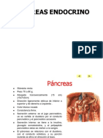 Anatomia Pancreas Clase 2017