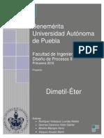 Dimetil-Final.docx