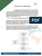12 Formulacion de Objetivos Curriculares (1)
