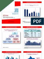 Informe Anual Empleo Enaho 2017