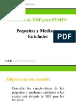 Sección 1, Pequeñas y medianas entidades.pptx