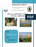 271516765-Laguna-Boro.docx