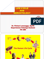 Life Cycle and Gerontology