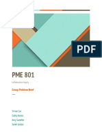 pme 801 group project