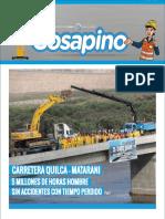Cosapino14 b