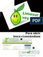 Lime Survey