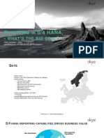 rapportering-i-s-4-hana-what's-the-big-deal.pdf