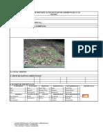 pasivo  ambientales.pdf