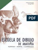 Escuela de Dibujo de Anatomia humana y animal (András Szunyoghy - Gyorgy Feher )