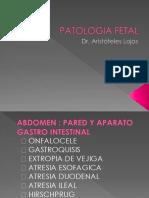 Patologia Fetal