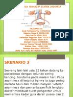 35_ppt Pleno Blok 10 Skenario 3