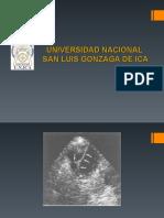 Dr.bustinza, Vesicula y Vias Biliares