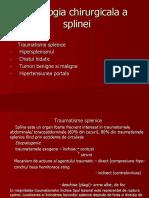 232097805-4-Patologia-splinei.ppt