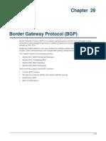 Border Gateway Protocol (BGP).pdf