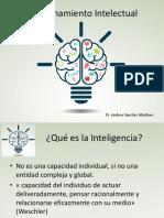 Presentación DIsc. intelectual.pptx