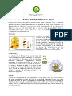Ficha de práctica Nº 02. MES.pdf