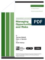 cid_mag_managing_opportunities_and_risk_march08.pdf.pdf