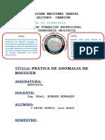 PRACTICA DE GEOFISICA.docx