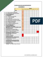 Modelo de Flujo de Caja de Proyecto