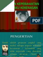 Perilaku_Kekerasan.ppt