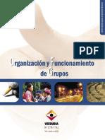 Organizacion y Funcionamiento Grupos