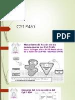 CYTP450