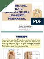 HUESO ALVEOLAR, LIGAMENTO Y CEMENTO.pptx