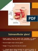 Submandibular Gland