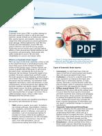PE-TBI Brain Injury