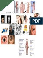 síndrome de pick.docx