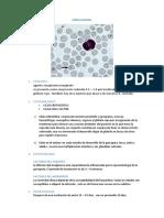 ANAPLASMOSIS (1)