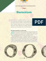 Blastocitosis